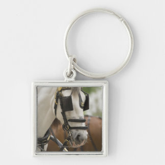 Horse with blinders Silver-Colored square key ring