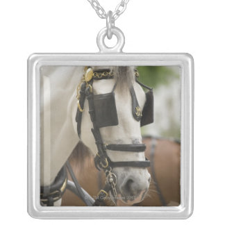 Horse with blinders silver plated necklace