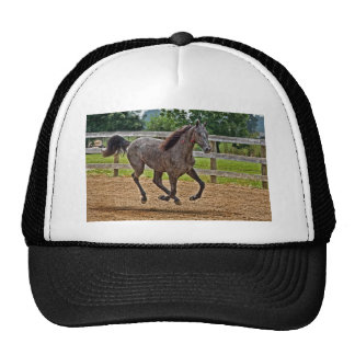 Horse Yearling Gallop Ball Cap Trucker Hat