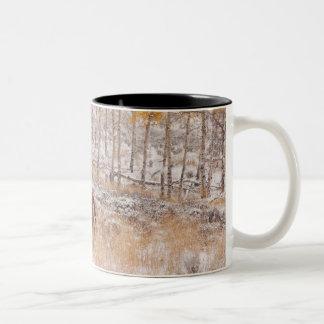 Horseback rider 18 Two-Tone mug