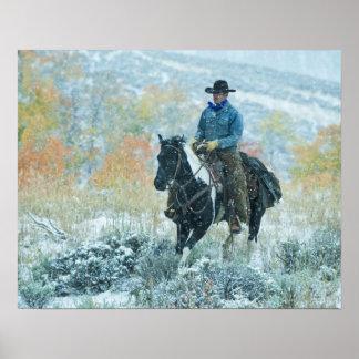 Horseback rider 19 posters