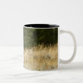 Horseback rider 20 Two-Tone mug