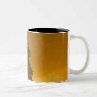 Horseback riders 3 Two-Tone mug