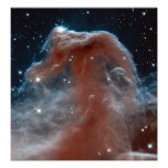 Horsehead Nebula Space Astronomy Photo