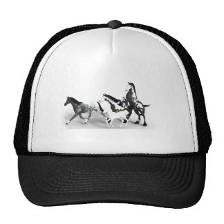 horses-1530858 cap