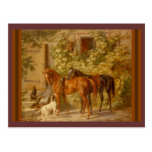 Horses and Dogs in Stable Yard Postcard