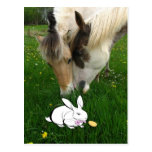 Horses and Easter Bunny Post Card