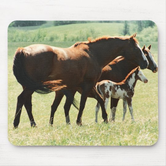 Horses and Foal Picture Mouse Mat