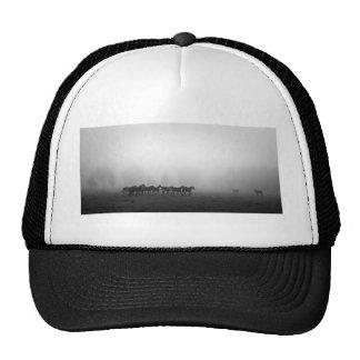 Horses and fog trucker hat