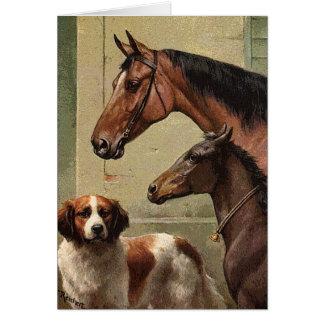 Horses and St Bernard Vintage Art Card