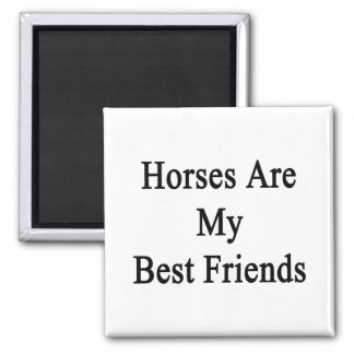 Horses Are My Best Friends Square Magnet