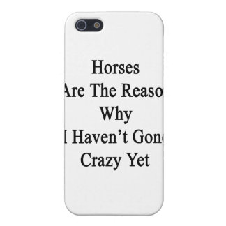 Horses Are The Reason Why I Haven t Gone Crazy Yet Case For iPhone 5
