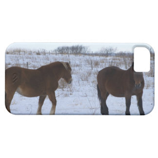 Horses at Cape Kiritappu, Hokkaido Prefecture, iPhone 5 Covers