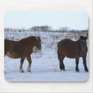 Horses at Cape Kiritappu, Hokkaido Prefecture, Mouse Mat