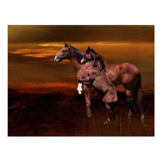 Horses at dusk postcard