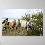 Horses At The Beach Print