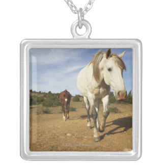 Horses, Aude, Languedoc-Roussillon, France Custom Necklace