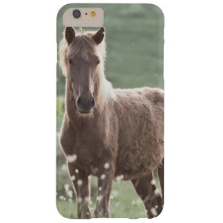 Horses Barely There iPhone 6 Plus Case
