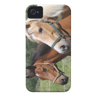 Horses Case-Mate iPhone 4 Case