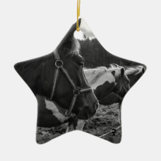 Horses Ceramic Star Decoration
