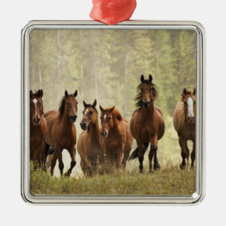 Horses cresting small hill during roundup, 2 christmas ornament