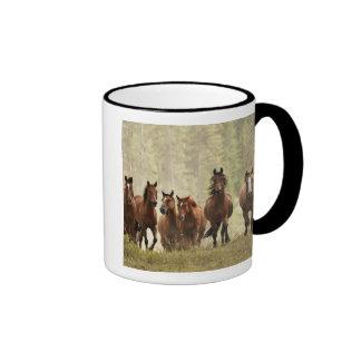 Horses cresting small hill during roundup, 2 ringer mug