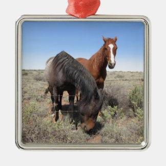 Horses Square Metal Christmas Ornament