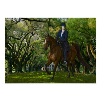 Horses - English tack - Aristocracy Posters