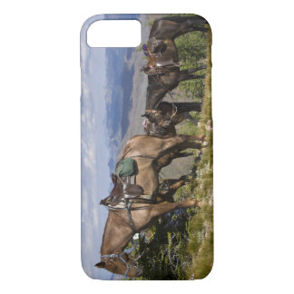 Horses (Equus ferus caballus) at scenic overview iPhone 8/7 Case