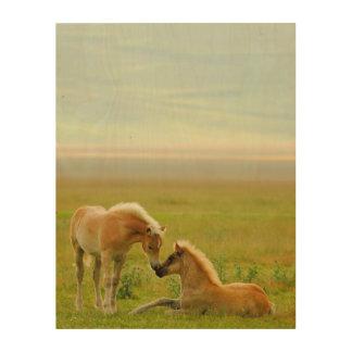 Horses foals in field. wood wall art