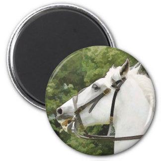 HORSES FRIDGE MAGNET