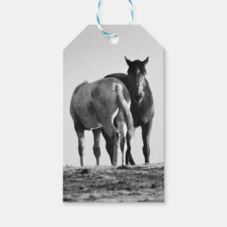 Horses Gift Tag