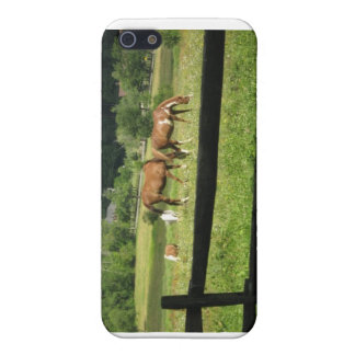 Horses Graze In Morn iPhone Case Cover For iPhone 5