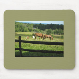 Horses Graze In Morn Mouse Pad