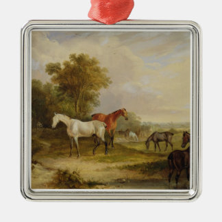 Horses Grazing: A Grey Stallion grazing with Mares Christmas Ornament