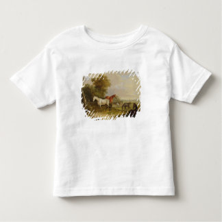 Horses Grazing: A Grey Stallion grazing with Mares Toddler T-Shirt