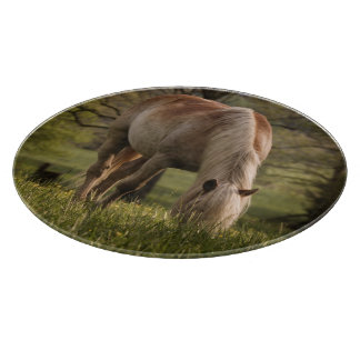 Horses grazing in meadow, Cades Cove, Great 3 Cutting Board