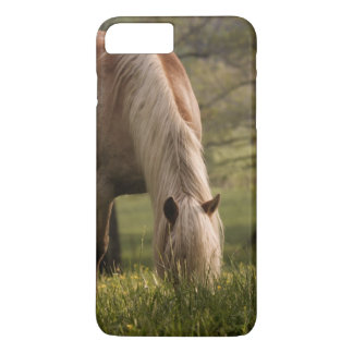 Horses grazing in meadow, Cades Cove, Great 3 iPhone 8 Plus/7 Plus Case