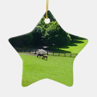 Horses grazing in Yorkshire Ceramic Star Decoration
