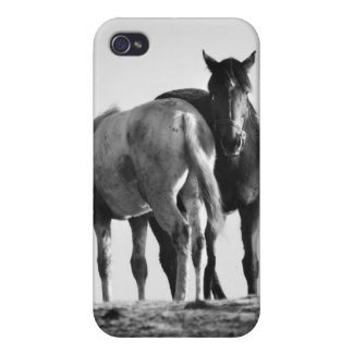 Horses Grazing iPhone 4 Case