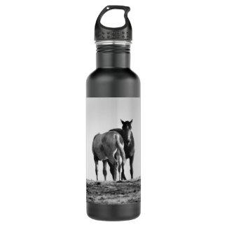 Horses Grazing Liberty 710 Ml Water Bottle