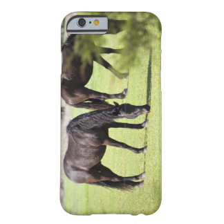 horses grazing on a horse farm barely there iPhone 6 case