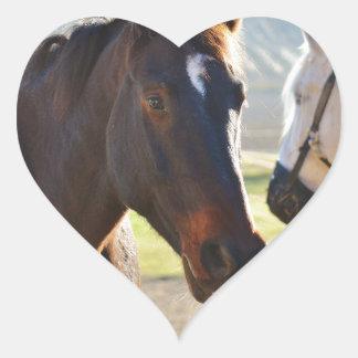 Horses Heart Sticker