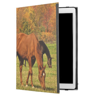 Horses in Autumn iPad Pro Case