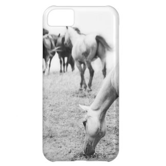 Horses in Black and White 2 Photography iPhone 5C Cases