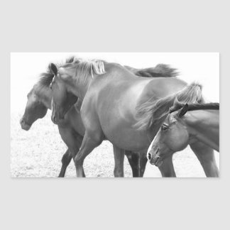 Horses in Black and White Photography Rectangular Sticker