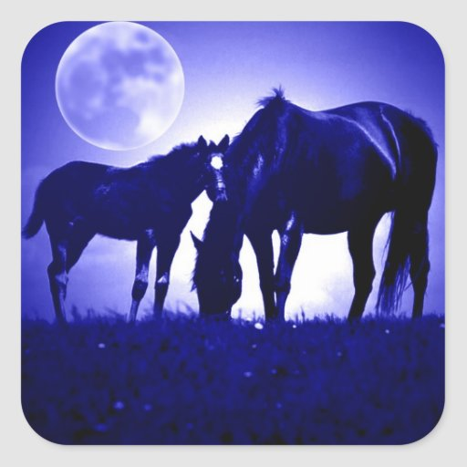 Horses in Blue Night Square Sticker