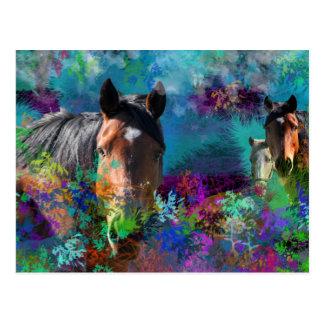 Horses In Fantasyland: A Horse Dream Come True Postcard