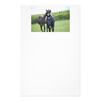 Horses in Love Stationery