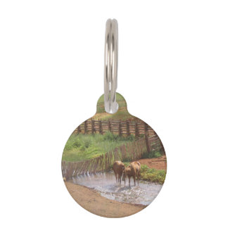 Horses in Moab Pet ID Tags